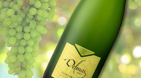 DELMAS CUVÉE TRADITION BRUT<br>FRANCE - Vintages #: 179978