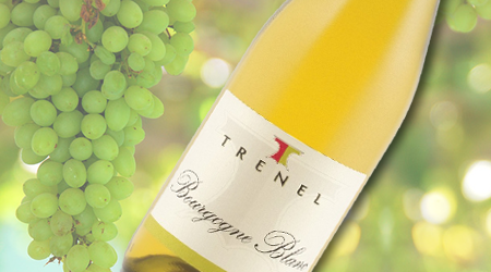 TRENEL BOURGOGNE BLANC 2013<br>FRANCE - Vintages #: 391094